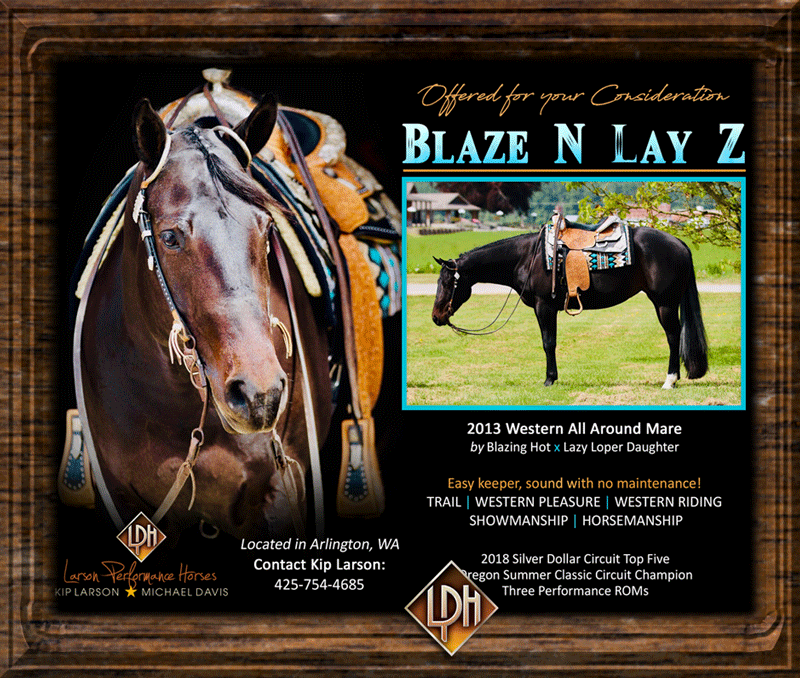 2013 aqha western pleasure show mare for sale3